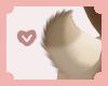 ~Inu | tail 1