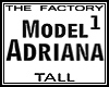TF Model Adriana1 Tall