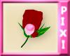 [P] Mr. Valentine Rose