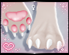 ˏˋ✧ Furry Paws