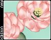 . Siren | Flower Crown