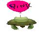 pink balloon turtle