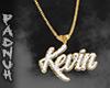 KevinBelvins Cus.