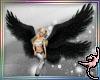 (IR)Seraph Wings: Black