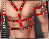!!S!! Harness Red