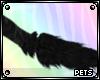 P | Oddball | tail