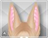 A| Luca Ears 1