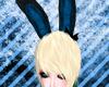 Bunny ears blue