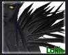 Black/Grey Feathers