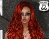 SD Elesia Phoenix