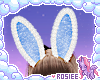 ✿ bunny ears v2