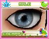 Grey Blue Male Eyes