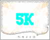 !N! 5K SUPPORT STICKER