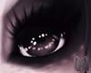 TIBBLES Black Eye M/F