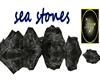 sea stones