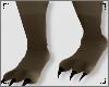e Wolf Feet