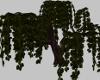 Large Tree w/poses