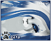 [Pets] Polar | hair v2