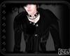 [ZL]Darkness PoP{E}Coats