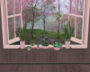 Calm Plants Shelf
