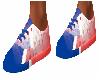 Patriots Fan Shoes