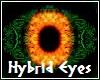 Hybrid Eyes M