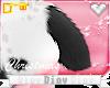 *D* Chloe Tail V1