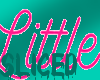 Little Sign