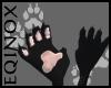 Black Paws (F)
