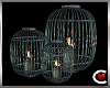 *SC-Drv Caged Candles