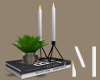 Deco Books Candles Plant