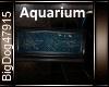 [BD]Aquarium
