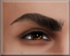 Male Eyebrows 1 black