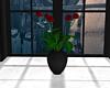 JV Plant B. #36