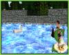 *SN* Black Swan Float