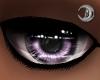 Lilac King Eyes