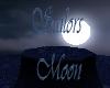 Sailors Moon
