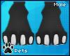 [Pets] Zentha | feet