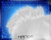 .M. Aussie Shoulder Fur
