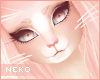 [HIME] Ever Whiskers