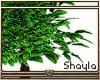 ~S~ Tree Stand