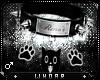 ;W Reno Custom Collar
