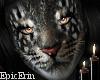 Khajiit Cat Face/Head v2