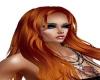 DiMir* Calisla Ginger