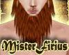 Long Beard Auburn