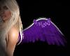 Animated Wings (Purrple)
