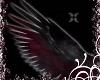 Tear Wings