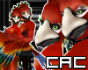 [C.A.C] Soring Sky Bird