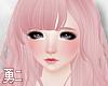 Y' Nollia Pink