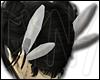 .anime vol-01 wings